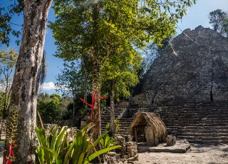 Permanent Link: Maya Mystery, the Jungle City of Coba